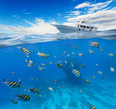 Underwater view of coral reef with horizon and water surface split by waterline. Anchoring yacht on waves. Summer holiday concept. High Resolution