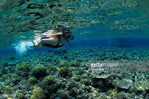 Fantaisie sous-marine