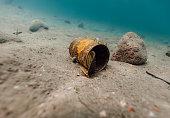 Underwater garbage