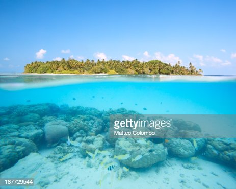 Underwater reef and island in the Maldives