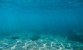 Underwater scene with white stones