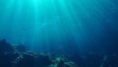 Underwater scene background with sunlight Kas, Turkey.