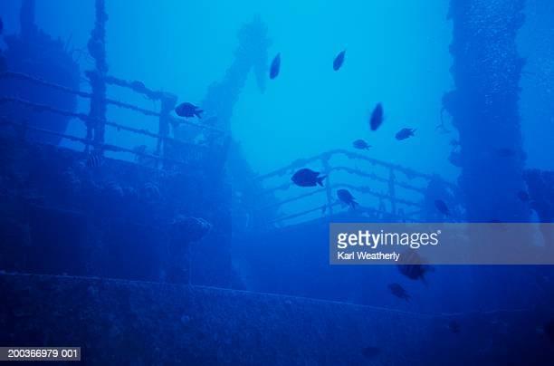 Underwater shipwreck