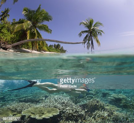 Underwater snorkelling in tropical reef