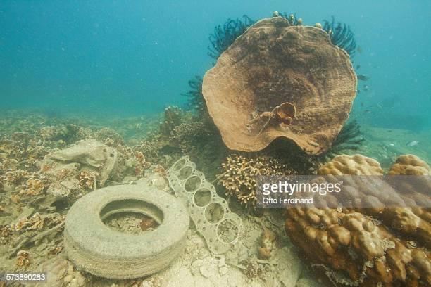 Underwater trash - car tyre