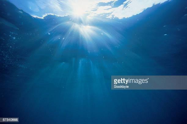 underwater view of sun rays