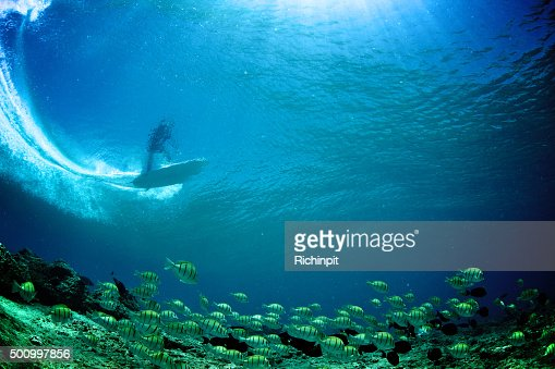 Underwater view of surfer through the wave with tropical fish