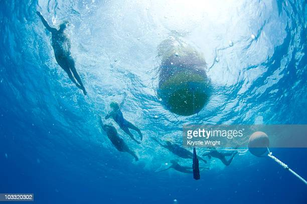 Underwater view of swimmers rounding a bouy during an annual ocean swimming race in the tropical waters off of Mana Island, Fiji.