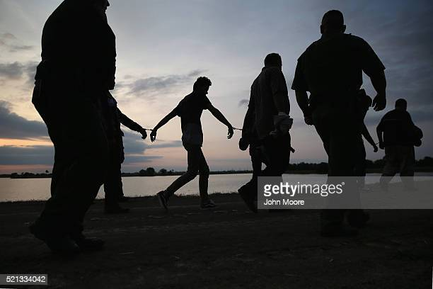 Undocumented immigrants are led after being caught and handcuffed by Border Patrol agents near the USMexico border on April 13 2016 in Weslaco Texas...