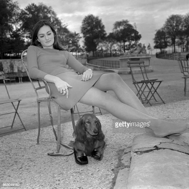 Une jeune femme et son chien ses pattes dans les chaussures de la fille se reposent le 23 octobre 1967 dans le jardin des Tuileries à Paris AFP PHOTO...