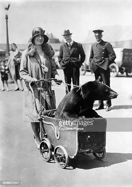 Une Londonienne promène un ourson en poussette dans les rues de la capitale britannique circa 1930 à Londres RoyaumeUni