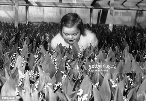 Une petite fille sent du muguet dans une serre de la banlieue parisienne le 26 avril 1958 en France