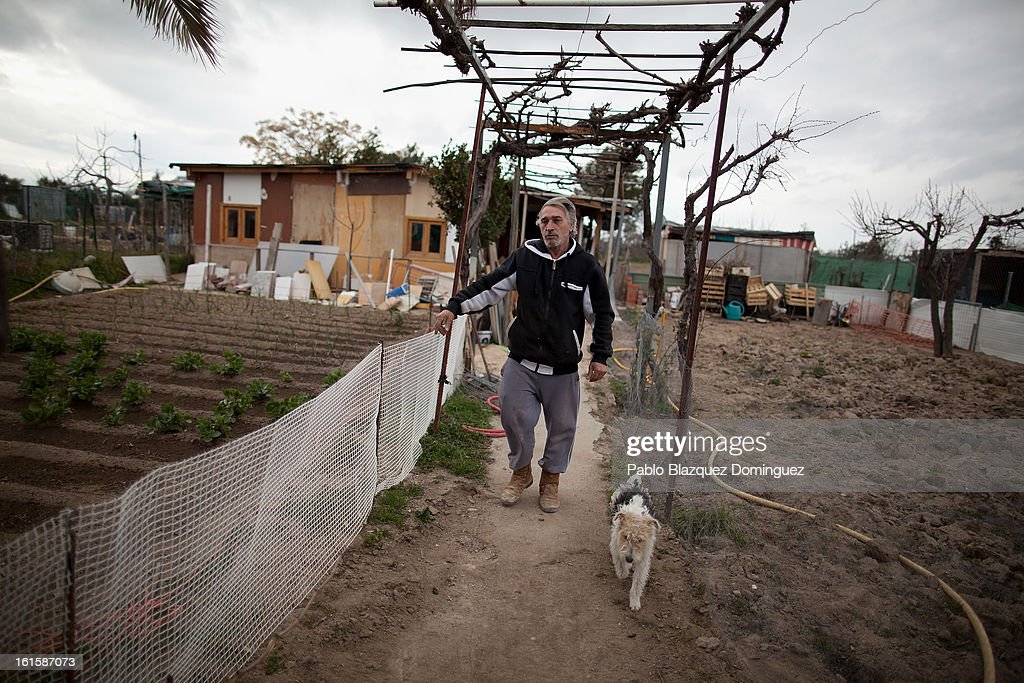 Unemployed Domingo Alcazar, 56, walks his dog Boni through the garden plot on which he lives and which is now situated on the site for the proposed 'Eurovegas' complex on February 10, 2013 in Alcorcon, near Madrid, Spain. Domingo, who is unemployed after having worked previously in the construction industry, lives on the allotment because he cannot afford to pay standard accomdation rent fees. Controversial plans have been given the go ahead for the Las Vegas Sands Corporation to build Europe's biggest casino and conference centre on the outskirts of Madrid bringing thousands of much needed jobs for the Spanish economy. As multi billionaire investor Sheldon Adelson's announced his plans protestors were claiming that the 36,000 room hotel complex would bring gambling addiction, criminal activity, prostitution and environmental damage to the area.