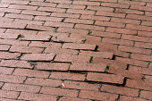 Uneven pavement of red bricks caused by root of large tree
