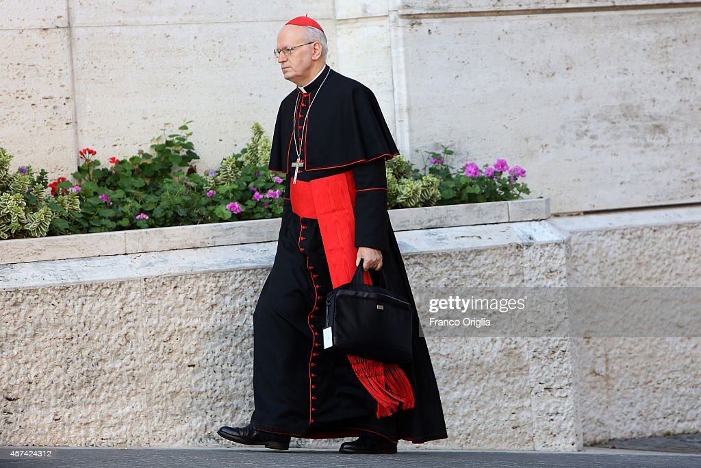 Ungarian archbisop of Budapest cardinal Peter Erdo arrives at the Synod Hall for the Synod on the themes of family on October 18, 2014 in Vatican City, Vatican. During the last day of the Synod Cardinal Reinhard Marx, head of the German bishops conference, noted that in Germany many committed Catholics are asking how the Church can be more inclusive of those who are divorced and remarried or living in homosexual relationships.