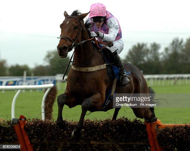 Ungaro ridden by Jim Crowley wins the H20nationwide 'National Hunt' Novices' Hurdle at Huntingdon Racecourse Brampton Cambridgeshire Wednesday...