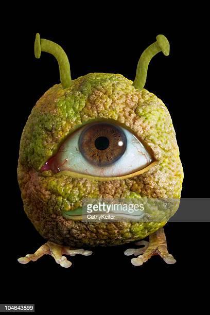 Unique Fruit
