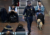 K9 unit patrols Union Station March 22 2016 in Washington DC Security has been increased around the city after bombings in Brussels have left at...