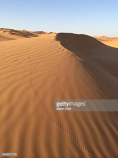 United Arab Emirates' Cities & Landmarks