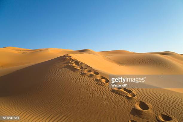 United Arab Emirates, Dubai, Rub al-Khali desert, the empty quarter, footprints