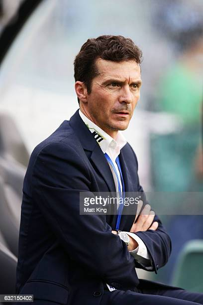 United coach Guillermo Amor looks on prior to the round 16 ALeague match between Sydney FC and Adelaide United at Allianz Stadium on January 20 2017...