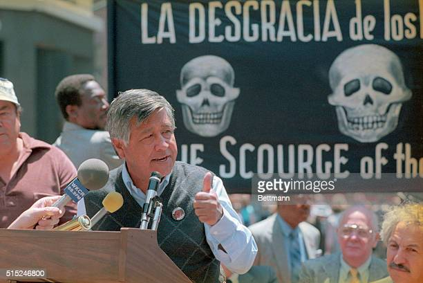 United Farm Workers leader Cesar Chavez protesting the use of toxic pesticides in the growing of table grapes that are harmful to both the consumer...