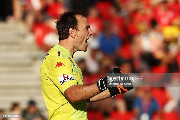United goalkeeper Eugene Galekovic celebrates at the end of the round 21 ALeague match between Adelaide United and the Brisbane Roar at Coopers...