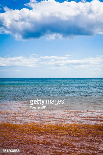 United Kingdom, England, Devon, East Devon, Sidmouth, Coast and red coloured water