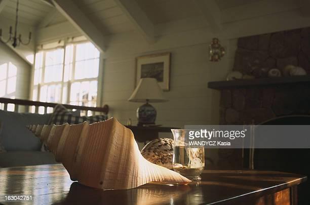 Cape Cod Martha's Vineyard coquillage décoratif sur une table dans une maison