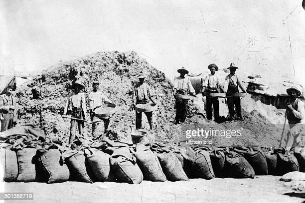 United States of America Hawaii Laysan Workers sieve the collected guano probably in the 1910s