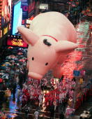 Universal Pictures' 'Babe' balloon makes its way down Broadway 26 November in New York during the 72nd Annual Macy's Thanksgiving Day Parade A steady...