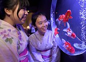 University exchange students Hsiao Yu Hsun and Tsai Yi Chun from Taiwan look at goldfish during a press preview of the 2016 EDO Nihonbashi Art...