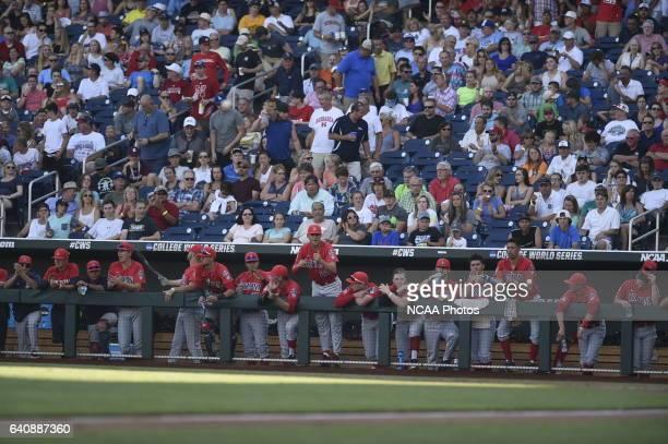 University of Arizona bench cheers on their teammates against Coastal Carolina University during the Division I Men's Baseball Championship held at...