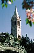 University of California, The Campanile, Alamada County, Berkeley, California, United States of America, North America