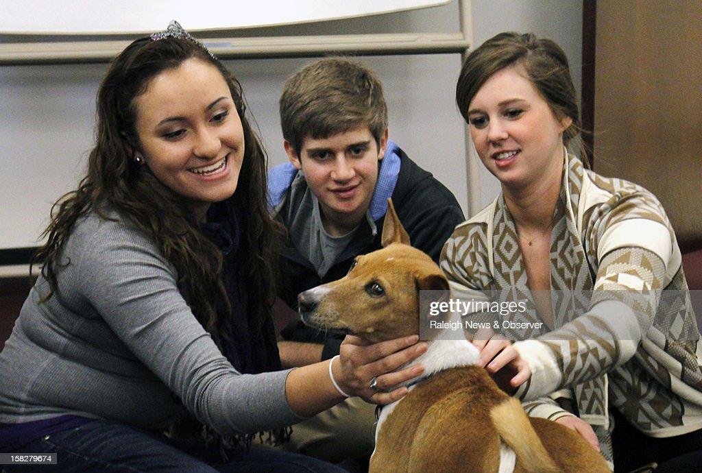 University of North Carolina freshmen Laura Gamo leftright along with Lucas John and sophomore Haley Ross pet Mickey an 11 year old basenji at Park...