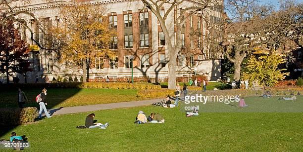 University Quad