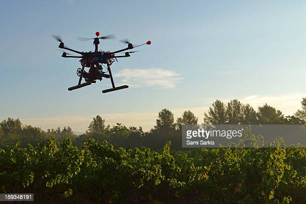Unmanned Aerial Vehicle (UAV) filming vineyards