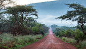 An upaved road in rural Congo, province of Equateur.