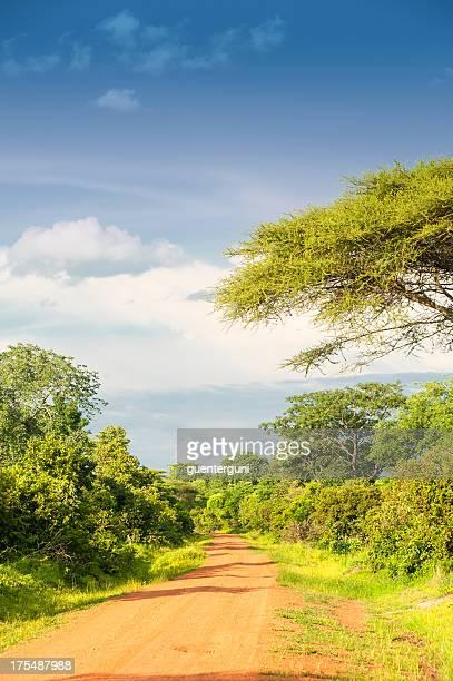 Unpaved road in rural Africa