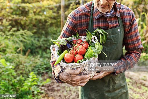 Unrecognizable farmer carrying basket with vegetables