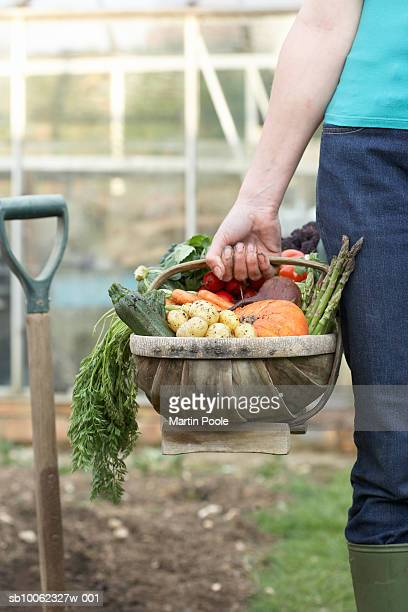 Unrecognizable person carrying basket of assorted vegetables in field, mid section