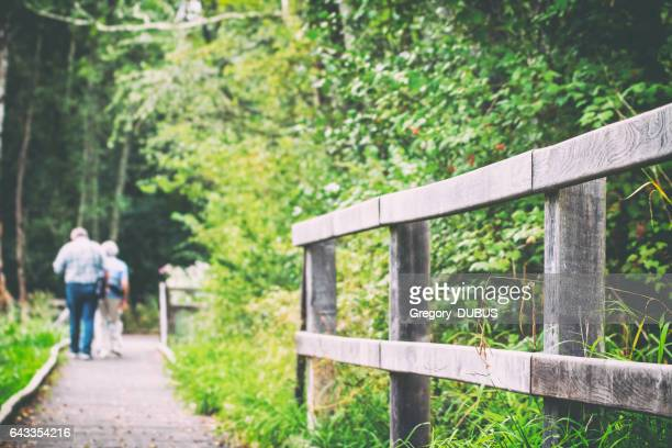 Unrecognizable tourists walking in end summer along wooden path in forest blurred by selective focus with copy space