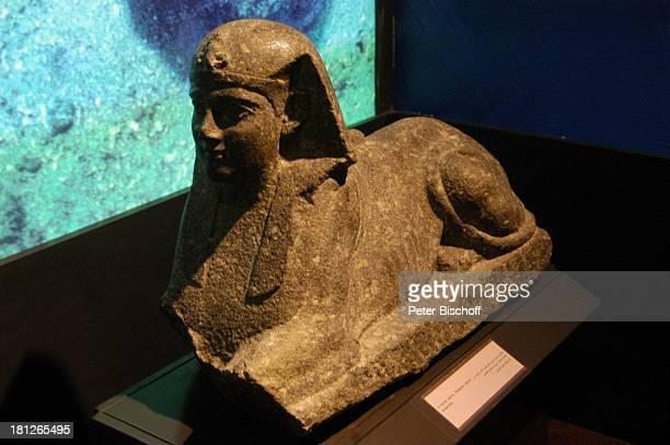 Unterwasserausgrabungen Ägyptisches Museum Alexandria Ägypten Afrika ProdNr 188/2006 Ausgrabungen Statue Nationalmuseum Reise