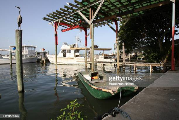 Unused fishing boats sit at the docks behind AP Bell Fish Co July 20 in Bradenton Florida as many fishermen say they're feeling an impact from the...
