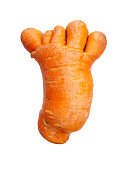 Unusual carrot in the form of a human hand or foot, isolated on a white background