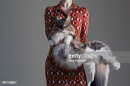 Unusual Cat Stand