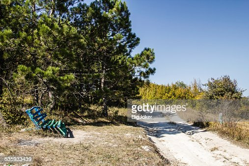 Unusual wooden bench handmade in a forest glade : Stock Photo