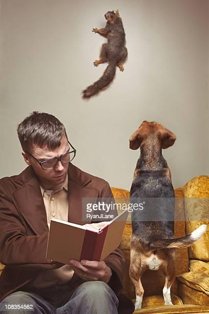 Unerwünschte Intruder Borstenhörnchen