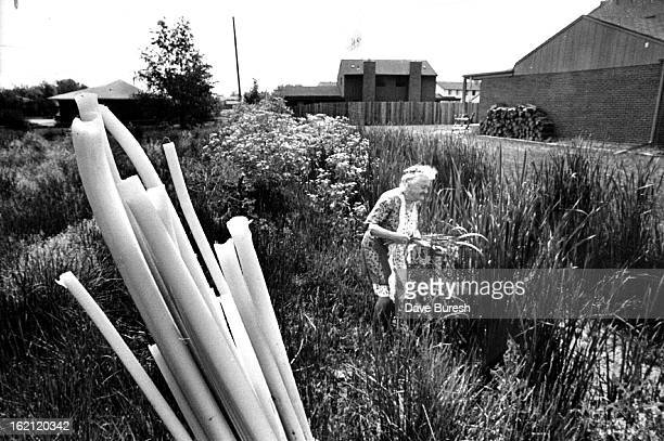 JUN 21 1977 JUL 3 1977 Upended white part of cattail stalks foreground will be fine in salad Mrs Irene Wheeler says