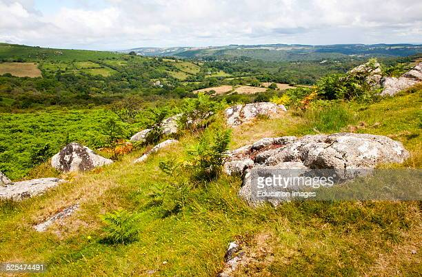 Upland granite landscape near Greator Rocks tor Dartmoor national park Devon England